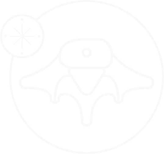Spinal Compass Icon Design